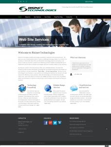 bisinet-homepage