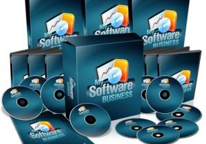 Business-Software Misonceptions